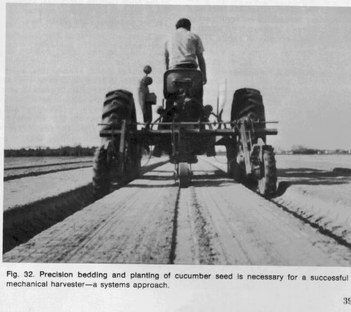 Photo of farmer on a tractor doing percision bedding and planting of cucumber seeds.