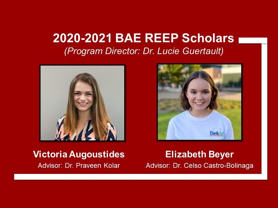 New BAE REEP Scholars